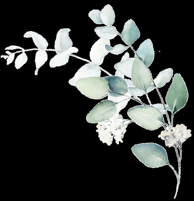feuille fleur 2 - Accueil